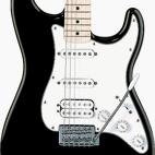 Fender: Standard Stratocaster HSS