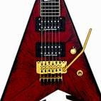 Jackson: Randy Rhoads Custom