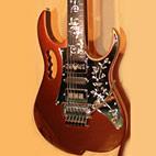 Casper Guitar Technologies: JEM Sublime Custom