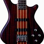 Washburn: T24 Taurus