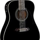 Fender: CD-160E-12