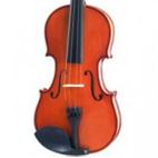 Parrot: Violin