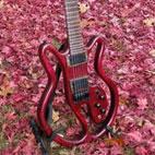 Eric Joseph Electric Guitars: EJ 7-String Contour Model