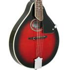 GR3106 Mandolin