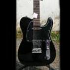 Custom Guitar Workshop: TE-2