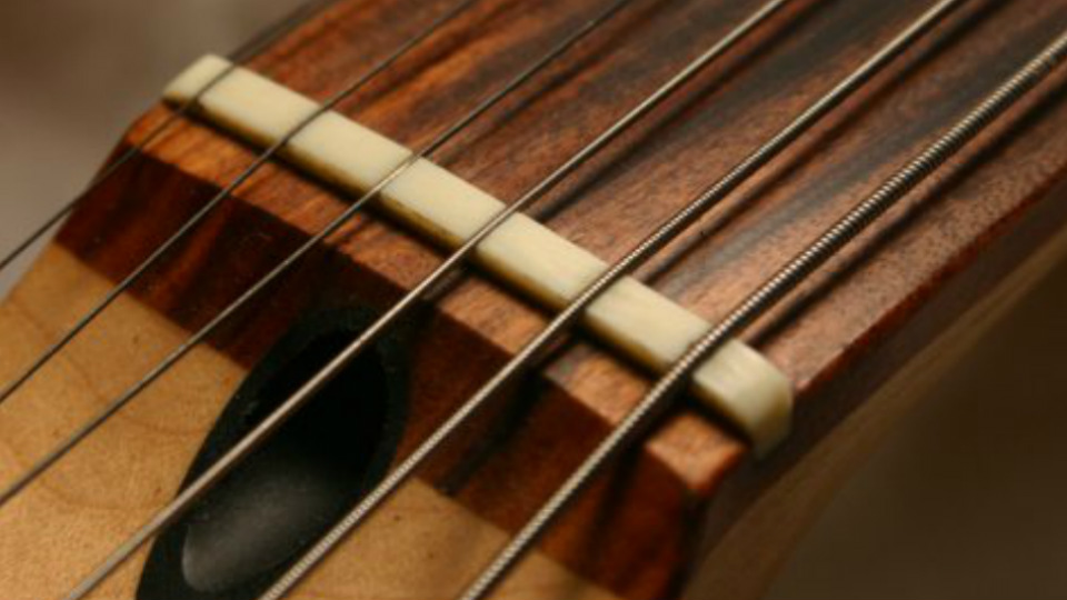 Truss Rod Tips