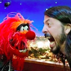 Dave Grohl Made an Appearance on 'The Muppets,' Watch Him Face the Mighty Animal in a Drum-Off