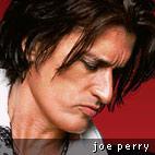 Aerosmith's Joe Perry: 'I have 600 guitars!'