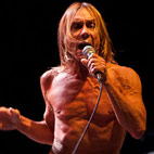 Iggy Pop Plans Covers Album