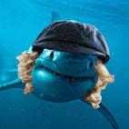 Sharks Like AC/DC Music, Experts Reveal