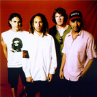 Rage Against The Machine Were Certainly An Active Band