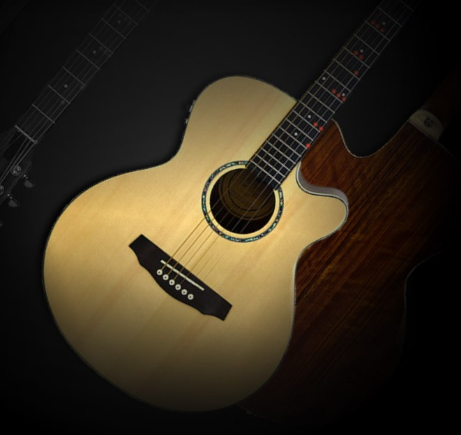 17 Rockin' Gifts: Fretlight Acoustic Is Looking for a New Home