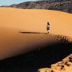 Dale Hazel Would Walk 500 Miles