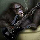 Wednesday Question: Your Favorite Guitar Joke