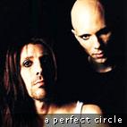 A Perfect Circle Album Went Platinum